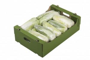 Упаковка для свежих фруктов и овощей