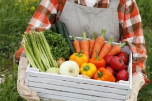 Продажа овощей оптом от компании «ЦинВэй»