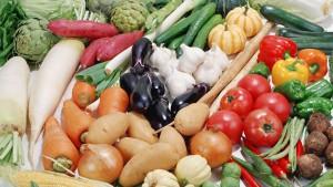 Где заказать овощи оптом?